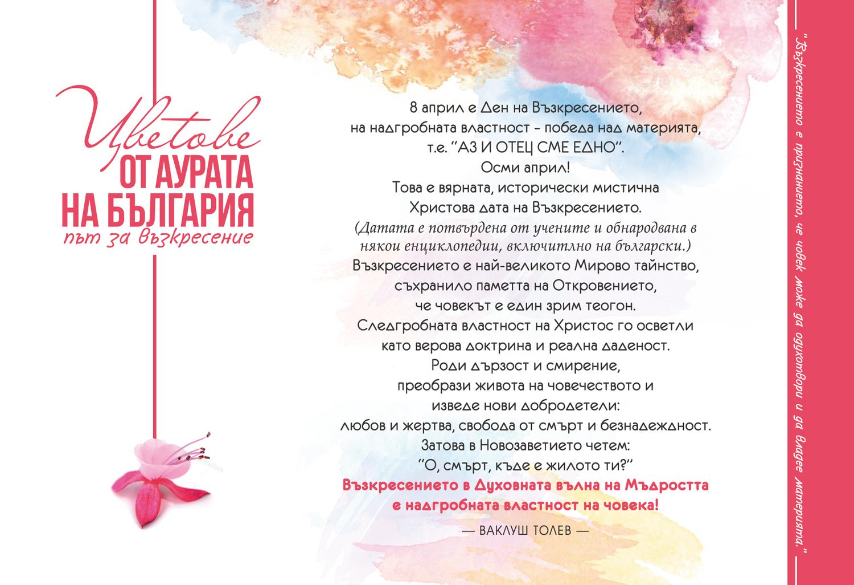 KORICA_CVETOVE_ResBG2-mini