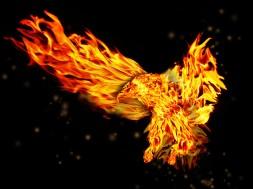 fire_eagle_by_lepercqj