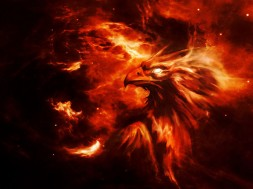 phoenix_background
