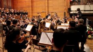 Video-Concert50